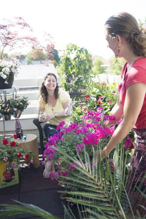 balkonplant_vh_jaar_verbana_text1