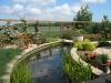 Aangelegde tuin met vijver. Elk jaar een overvloed aan jonge visjes!