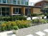 Gemengde vaste plantenborder bij een eco-woning in Hellevoetsluis