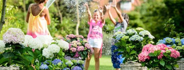De tuintrends: de zomer van 2015